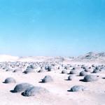 رحلات فى الصحراء