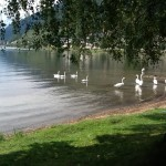 Zell am See , Alpine Lakes August 2013